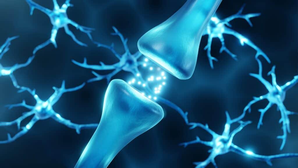 Neurotransmitters act as sleep regulators